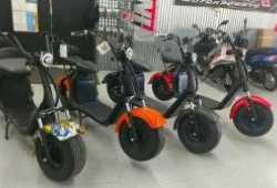 For Sale Electric scooter citycoco 3000W motor wit